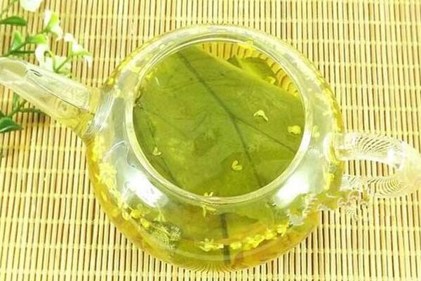 荷叶茶能减肥吗