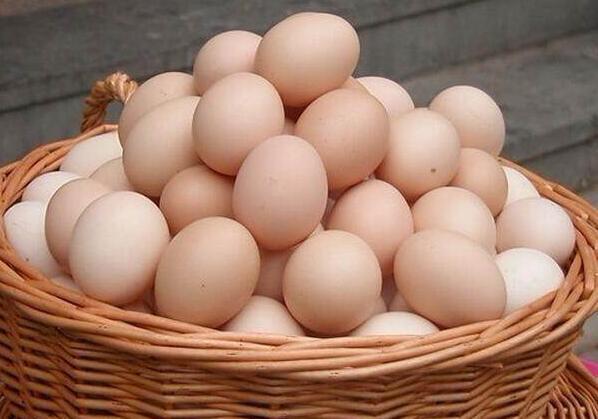 蛋白质减肥法